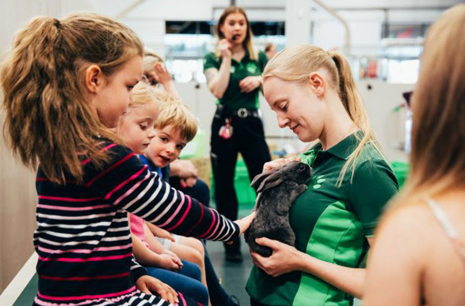 Pets At Home To Host Free Pet Workshops During The Summer Holidays Holiday Travel Lifestyle News